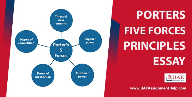 Porter's Five Forces Principles Essay