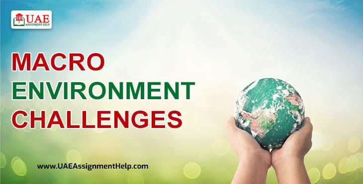 Macro Environment Challenges