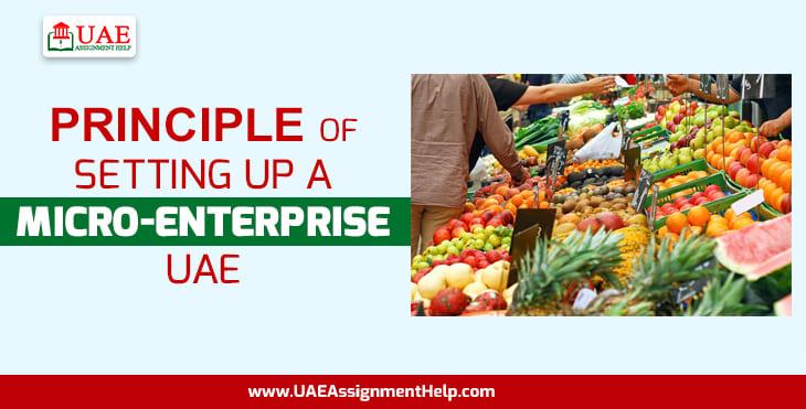 Principle of Setting up a Micro-Enterprise, UAE