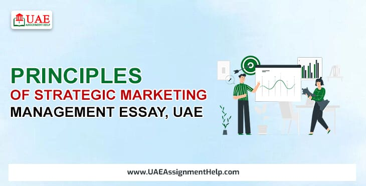 Principles of Strategic Marketing Management Essay, UAE