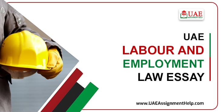 UAE Labour Employment Law Essay Sample