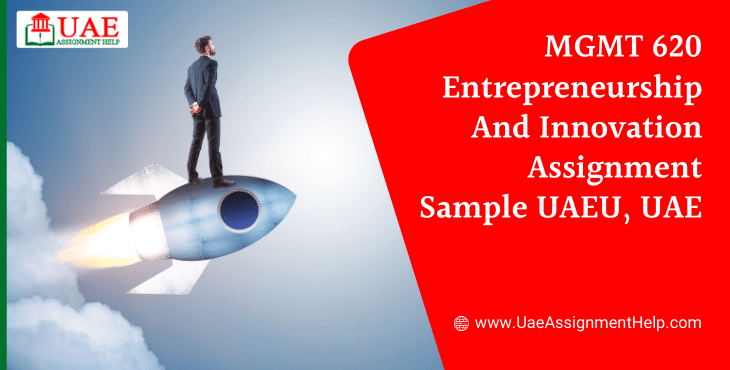 MGMT 620 Entrepreneurship and Innovation Assignment Sample UAEU